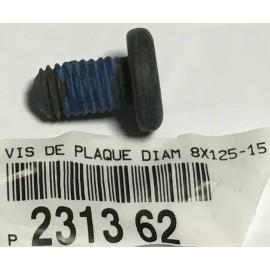 Vis de plaque M8x125-15